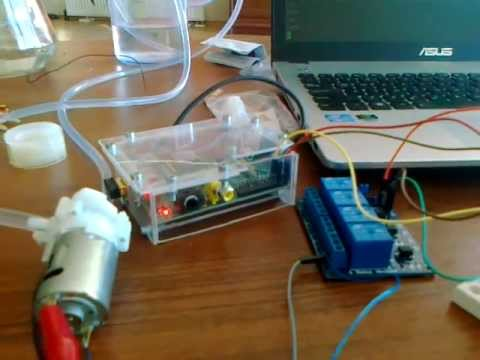 Plant Watering System On Raspberry Pi Youtube