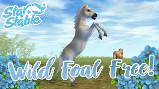 The Wild Rescue Foal Goes Free!! 🐴🌟 Star Stable Online