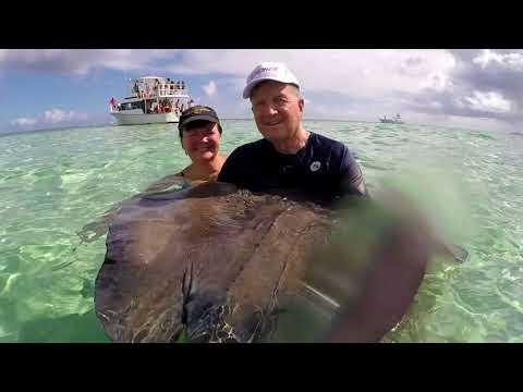 STINGRAY CITY on Cayman Explorer in GRAND CAYMAN  2017