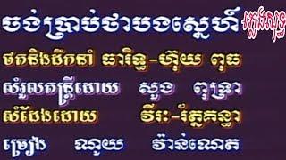ចង់ប្រាប់ថាស្នេហ៏ ណយ វ៉ាន់ណេត ភ្លេងសុទ្ធ Karaoke Pleng soth (Khmer instrumental)