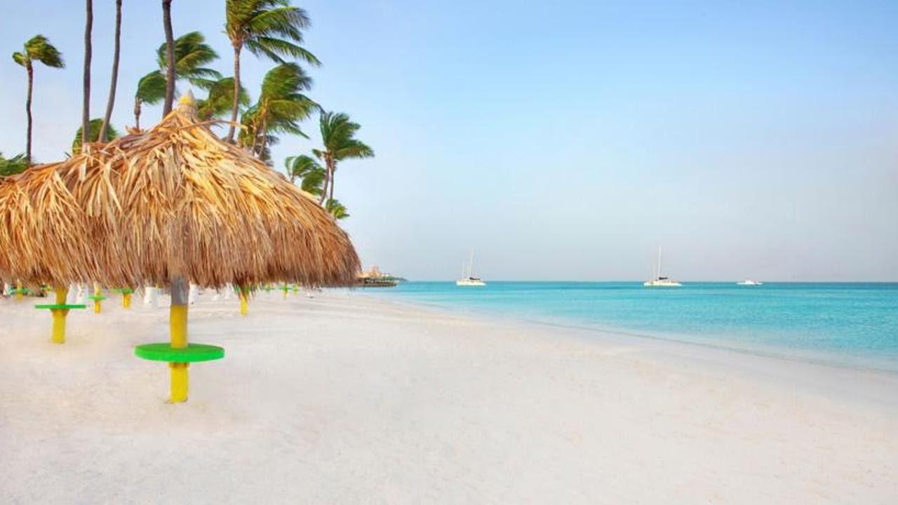 Holiday Inn Resort Aruba Beach Palm Eagle Caribbean Islands 4 You
