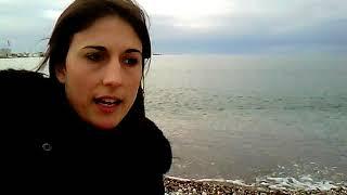 "Dialects and verities in Serbian / ""serbo-croatian-bosnian-montengrian"""
