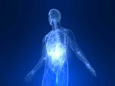 The Ultramind Solution Fix Your Broken Brain By Healing