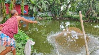 Beautiful Net Fishing | Village Fisherman Catching Fish With Cast Net