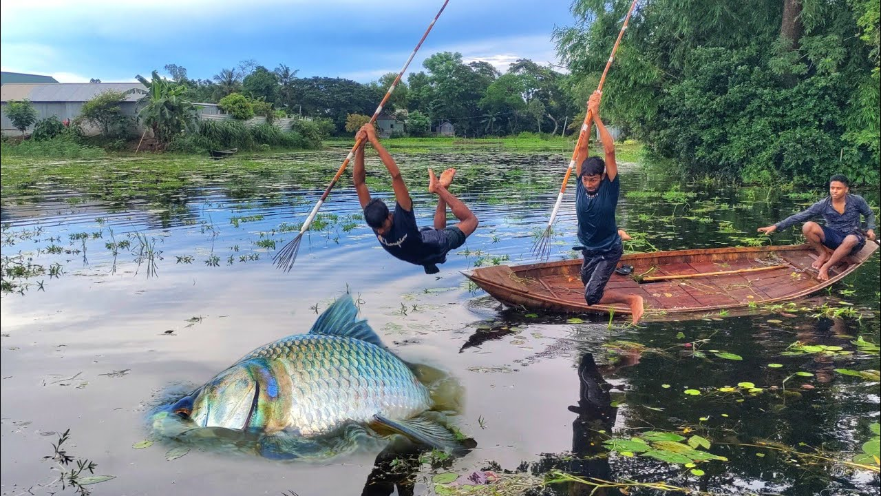 Unique & Best Bowfishing From Boat💖 Best Boat Fishing 2021💖Bamboo Crossbow Fishing Technique By Boat