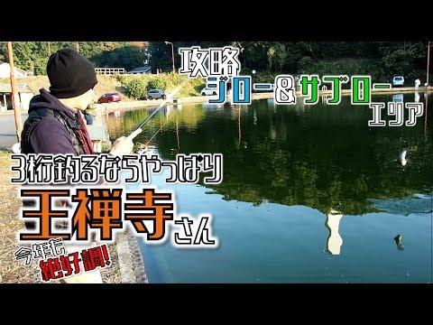 ★大物しか釣れない驚異のジローエリアサブローエリアは激濃魚影さすが王禅寺さん