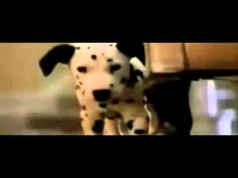 Image Result For And Dalmatians Full Movie