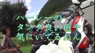日吉ダム散歩(合ちゃんと)