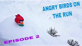 Angry birds on The Run | Snowboards challenge