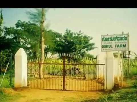 farm land in mysore