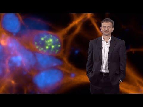 Bench to Bedside: Drug Discovery in Neuroscience - Ricardo Dolmetsch