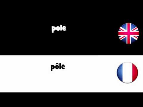 LEARN 1 FRENCH WORD = pole