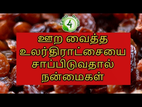 Amazing Benefits Of Eating Soaked Raisins in Tamil