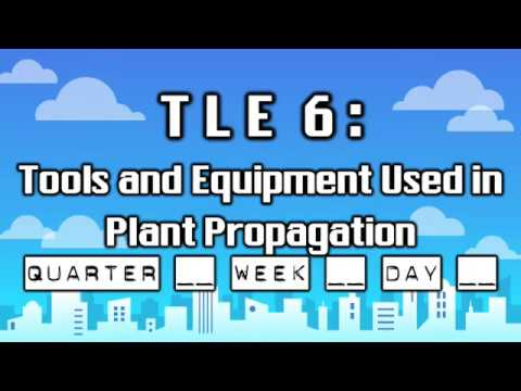 TLE 6 - Tools And Equipment Used In Plant Propagation