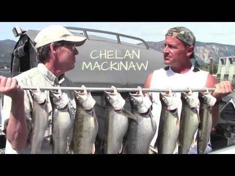 Lake Chelan Mackinaw Trout