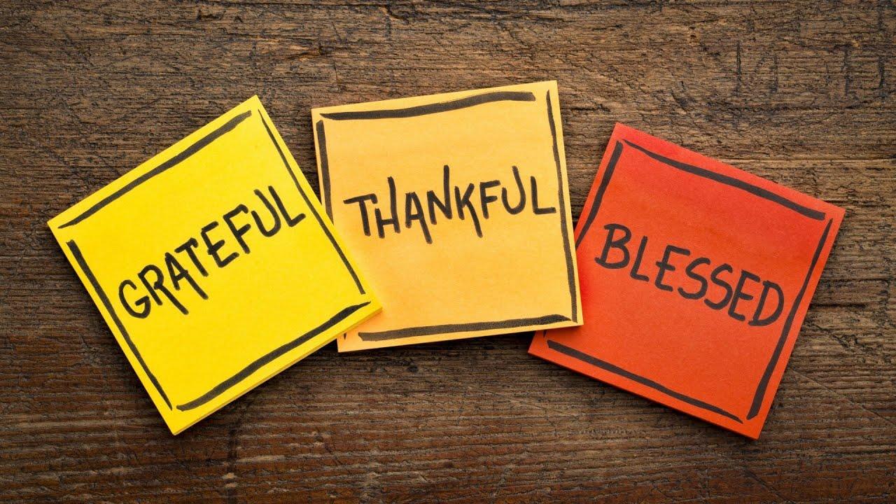 Gratitude | Geeta B Bhansali
