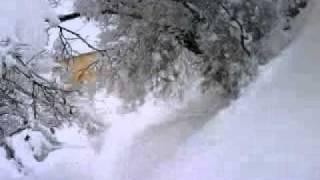 Cetinje pod snijegom 2012 febr. 12 - Podgranica i Donje Polje