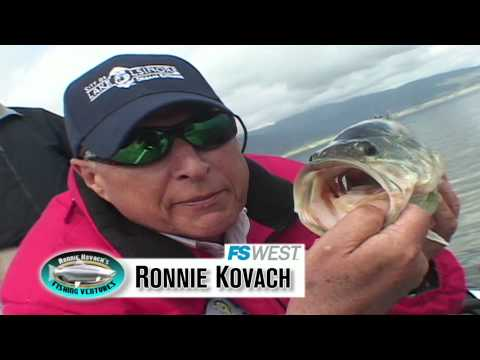 Big Fish & More at Lake Elsinore - Ronnie Kovach's Fishing Ventures