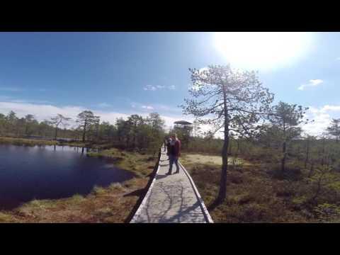 ESN Tallinn Wild Bog Trip spring 2016