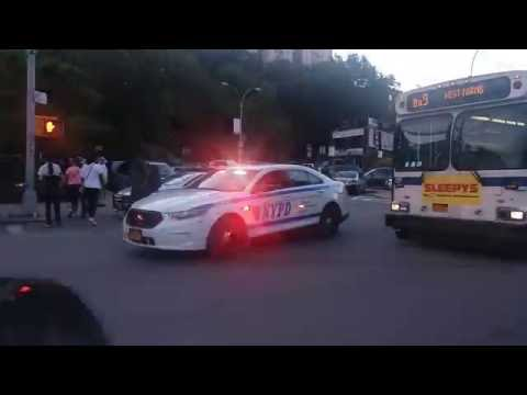 NYPD Stop NYC MTA Bus, Search Reported Liquor Store Robber In The Bronx, New York