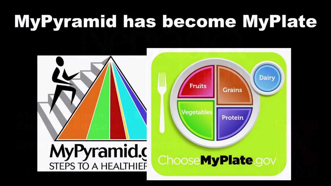 Choose MyPlate Lessons, Worksheets, Activities ...