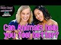 Can Animals Help You Feel Better? Aimee Song & Kati Morton | Happy Hour Ep. 1