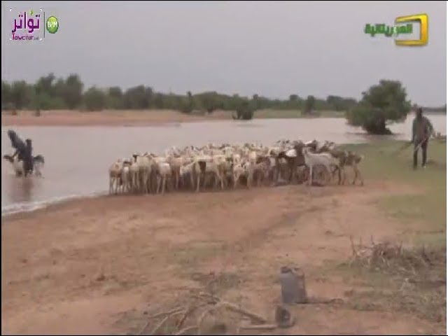 تساقطات مطرية و استعداد لموسم الخريف | قناة الموريتانية