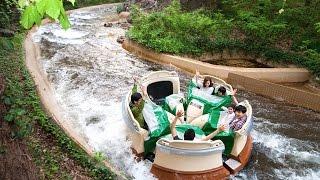 에버랜드 아마존 익스프레스/Everland Amazon Express/한국여행/korea trip