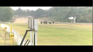 International Horse Racing