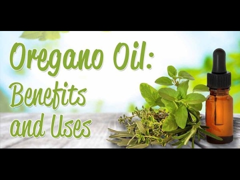 Oregano Oil – Nature's Bacteria Eliminator – Science Proves Powerful Treatment for Many Conditions