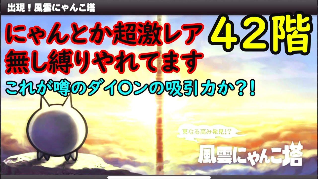 42 塔 風雲 にゃんこ