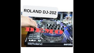How to basic transition a song like a pro ( Roland DJ-202)