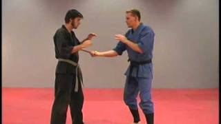 How to Use a Stick in the Martial Arts by Rick Tew and NinjaGym.com