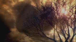 RESIDENT EVIL 7/ Trailer. Gameplay. (Terror insano) lançamento e pré venda