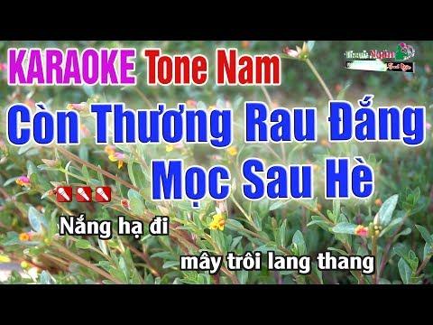 Còn Thương Rau Đắng Mọc Sau Hè Karaoke Tone Nam | Bản Chuẩn 2020 - Nhạc Sống Thanh Ngân