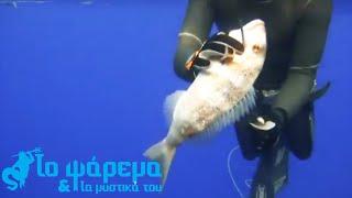 Υποβρύχιο Κυνήγι - Προσεγγίζοντας το θήραμα