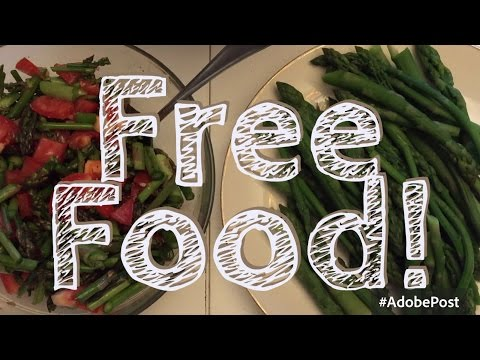 The Hunt for FREE Food || Frugal Living Series