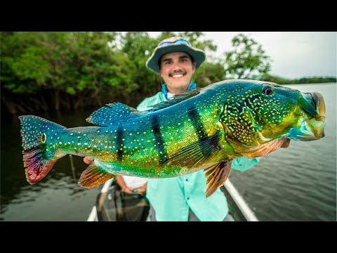 Catching GIANT Peacock Bass In The Amazon!!! (NEW PB)