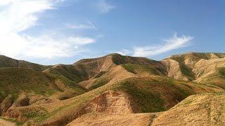 كيف حولت اسرائيل  رمال الصحراء الى ذهب؟