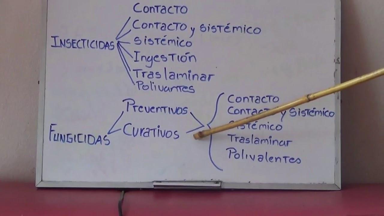 Download PLAGUICIDAS Y/O PESTICIDAS QUE SON Y COMO ACTUAN??  (PRIMERA PARTE)