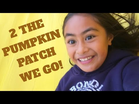 2 the Pumpkin Patch we go! 🎃 ABC Tree Farms & Pick of the Pumpkin Patch