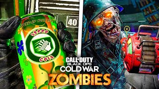 BLACK OPS COLD WAR ZOMBIES - EVERYTHING YOU NEED TO KNOW! (Perks, Easter Eggs & MORE)