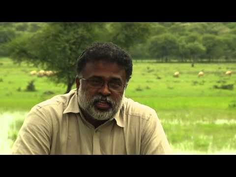 Land for Life Award - Foundation for Ecological Security, India