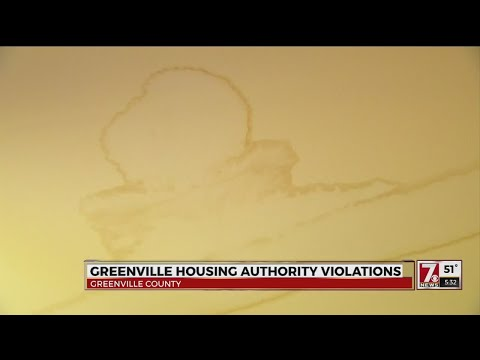 Greenville woman faces homelessness near the holiday due to ceiling leak
