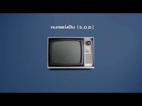 SIN - ทะเลแห่งฝัน [Official Lyrics Video] - วันที่ 25 Jan 2018