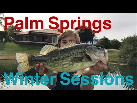 Palm Springs Bass Fishing - Winter Sessions