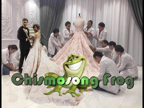 Dr. Vicki Bello 5 Million Wedding Gown
