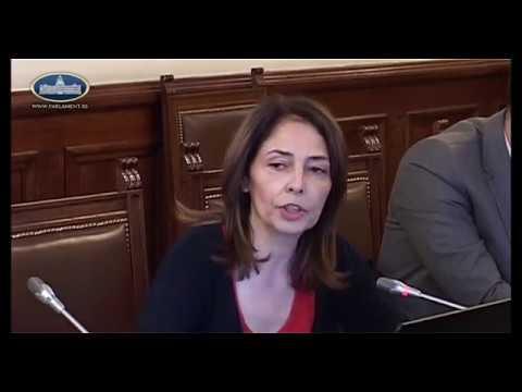 Kako je poslanica Branka Stamenković na teži način saznala da reč 'pašteta' vređa SNS poslanike