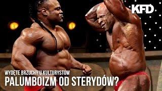 Palumboizm - wielki bebzon - sterydy, trening w pasie i co jeszcze? - KFD 2017 Video