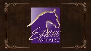 Equine Affaire  Warwick Schiller Clinic